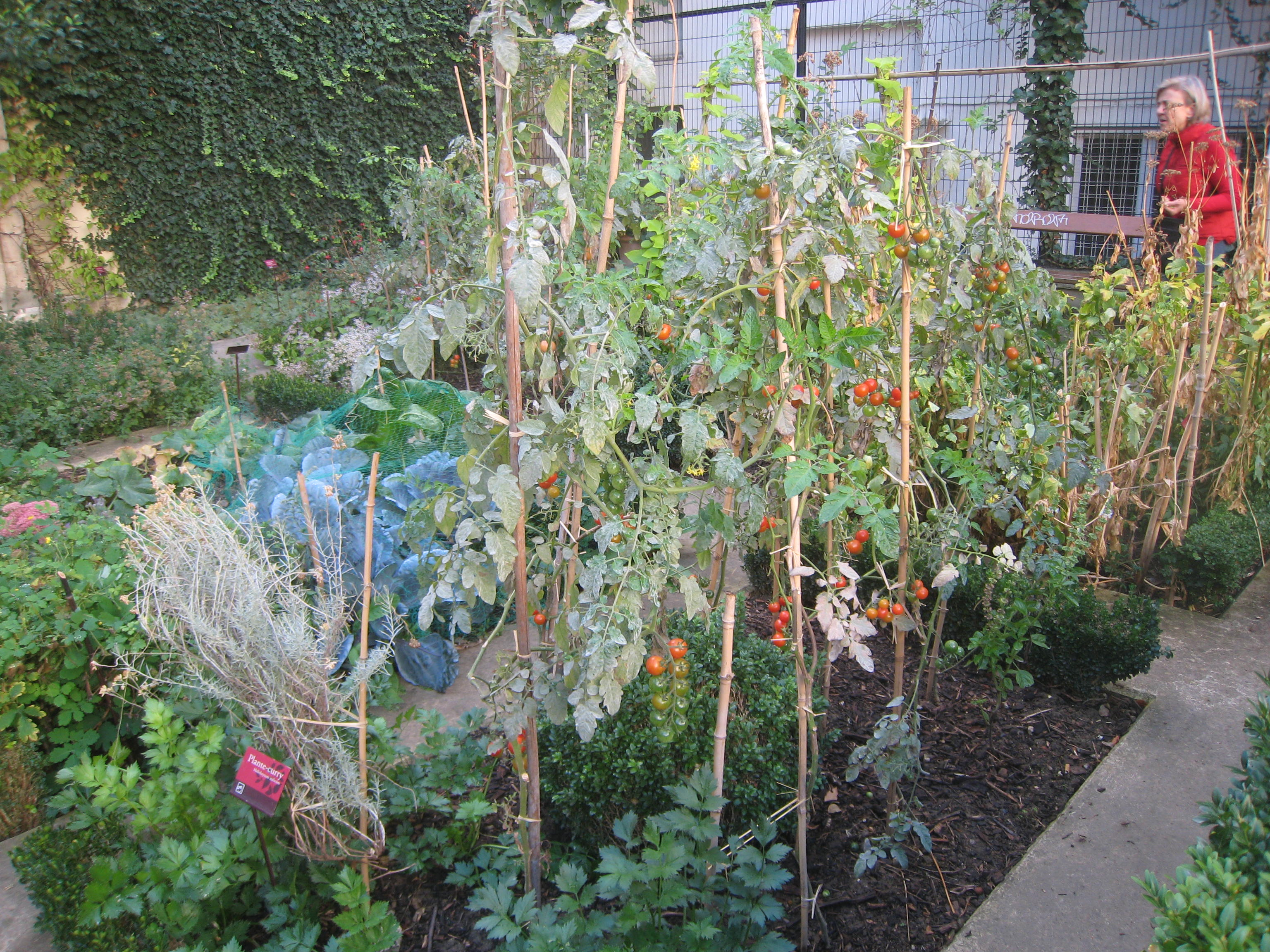 Les jardins en f te ballade dans paris le bonheur est dans le jardin - Jardin du clos des blancs manteaux ...