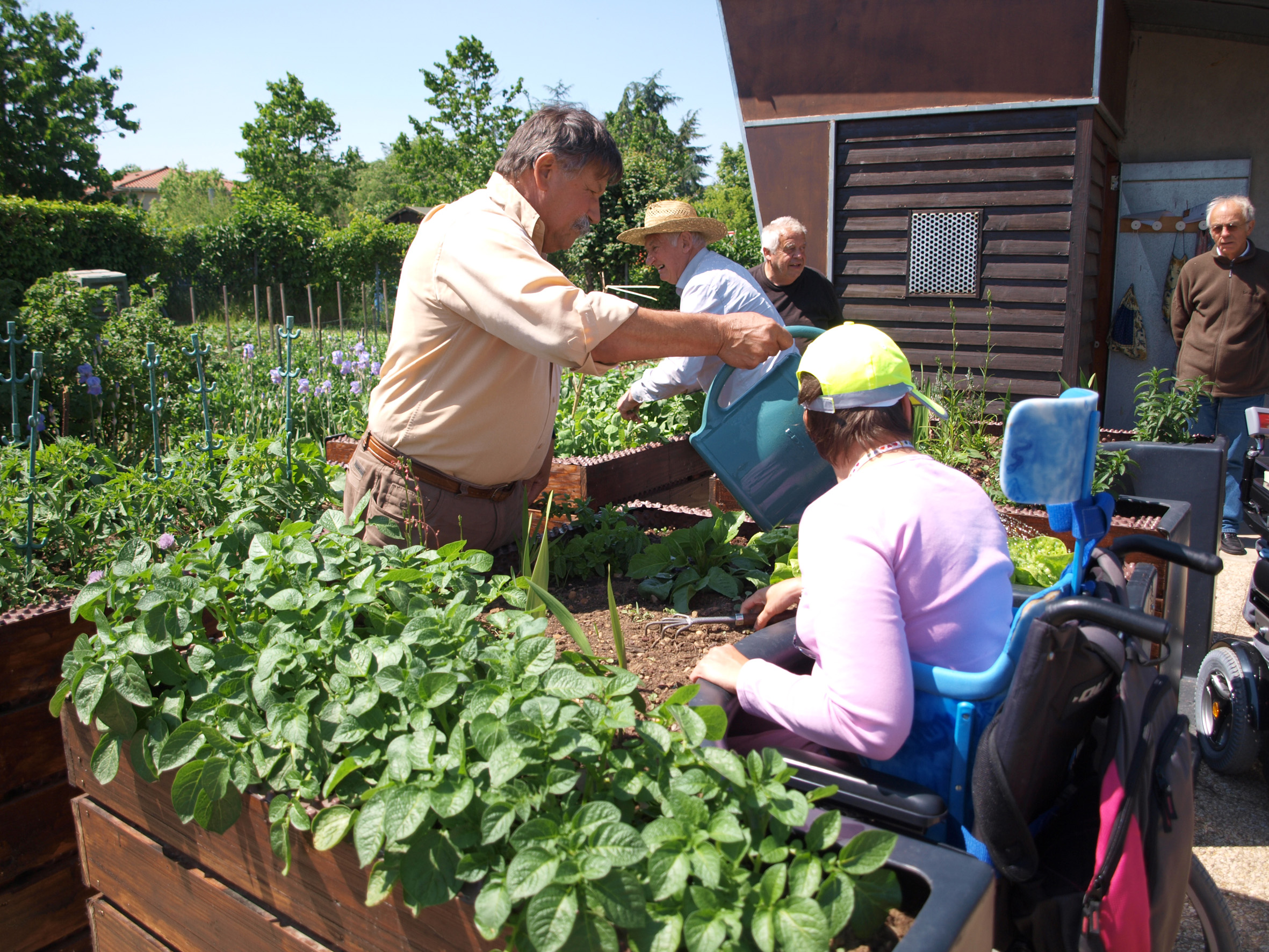 Jardiner En Fauteuil Roulant Le Bonheur Est Dans Le Jardin