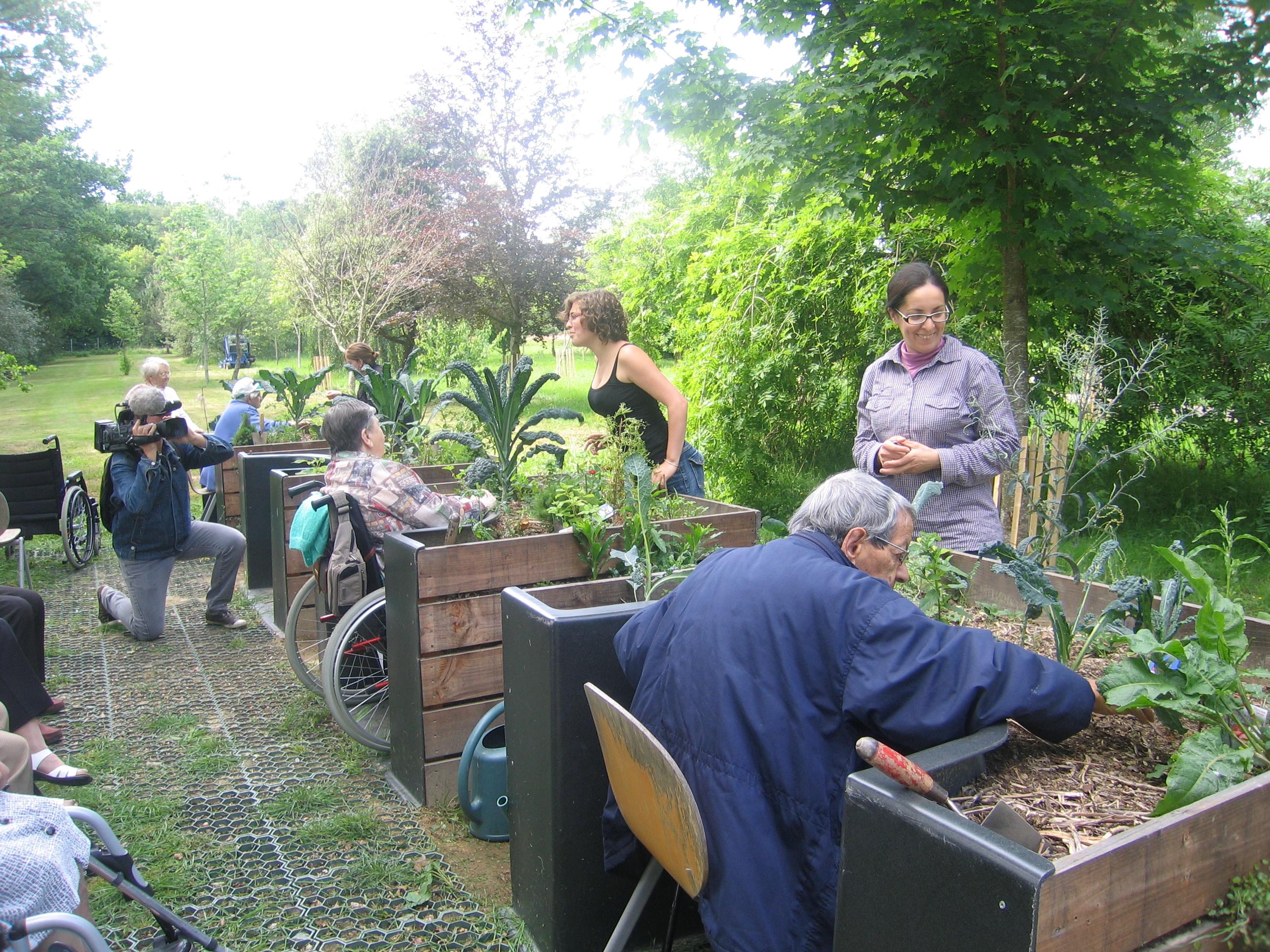 Terraform 11 lyc e agricole jules rieffel 2011 for Bar roulant de jardin