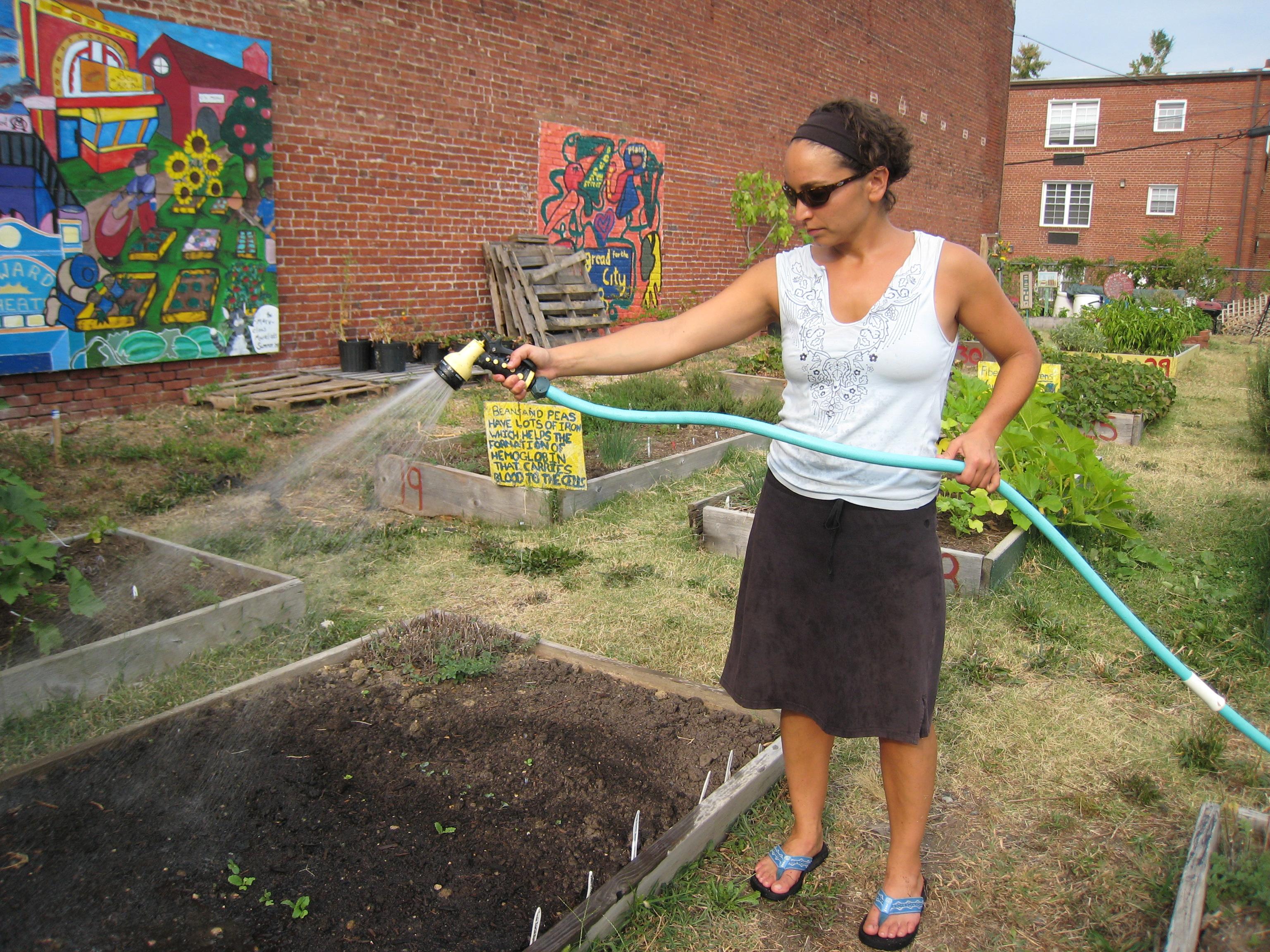 Jardin partag le bonheur est dans le jardin - Personne qui repare les cheminees ...