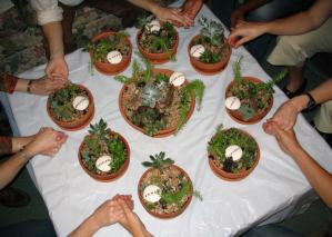 Ces jardins aident les membres du groupe à explorer les concept d'un espace sûr.