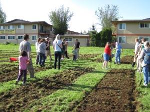 Une trentaine de personne sont venues aider au printemps 2012. Stimuler l'intérêt au fil du temps est plus difficile (crédit photo Outgrowing Hunger)