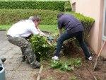 Des bénévoles arrachent des haies pour faire place à des carrés de culture et des jardinières de récupération.