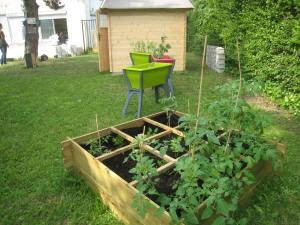Cabane de jardin, jardinières, plantations en carré.