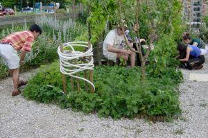 Un groupe au jardin