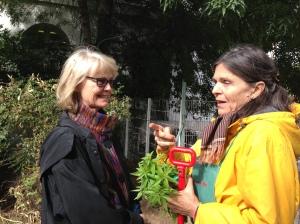 Suzanne Redell (gauche) et Anne Ribes dans le jardin d'Anne à la Pitié-Salpêtrière