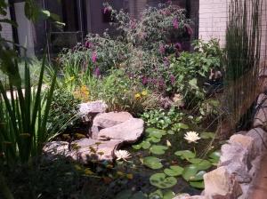 Kirk Hines courtyard