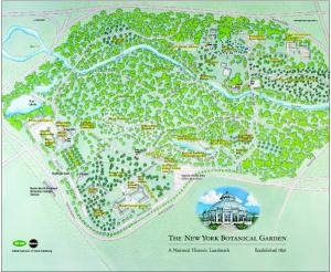 La carte des lieux