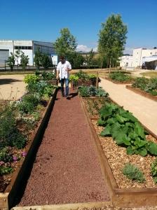 Bertrand Ollier, infirmier et jardinier, a porté le projet avec Romain Pommier.
