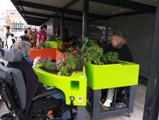 Une jardinière Verdurable à la MAS Saint Jean de Malte à Paris
