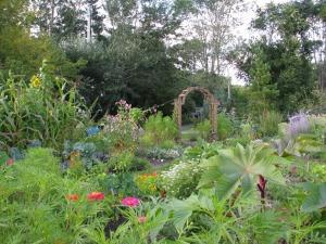 Le jardin collectif de Saint-Jérôme