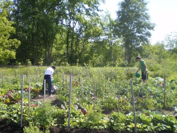 Deux jardiniers à Saint-Jérôme