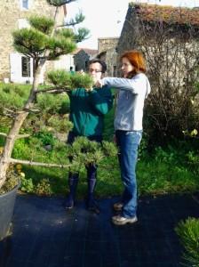 Stage d'hortithérapie en création de jardins japonais