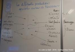 Les élèves cartographient les productions autour de Vénissieux