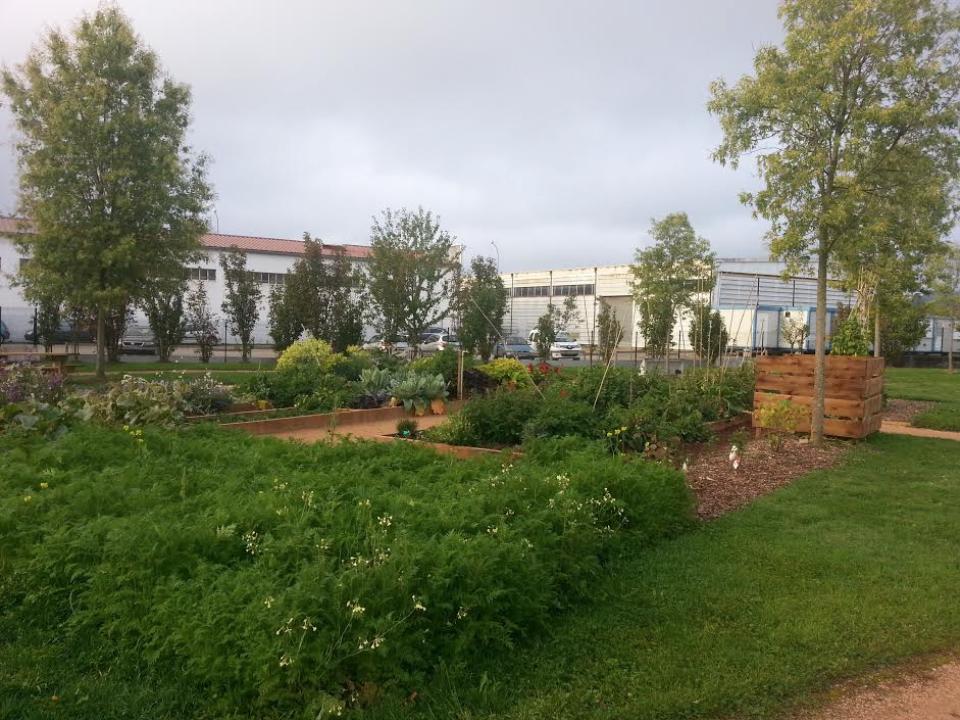le-jardin-des-melisses-au-chu-de-saint-etienne
