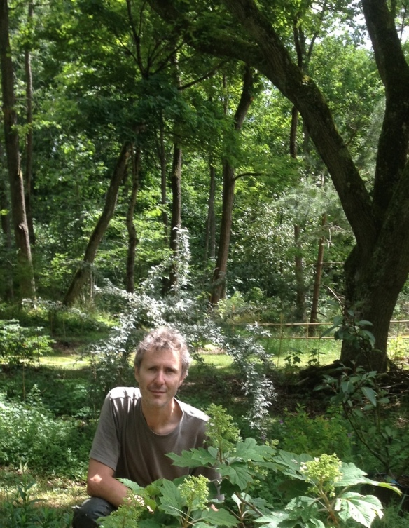 JP_jardin-foret_2