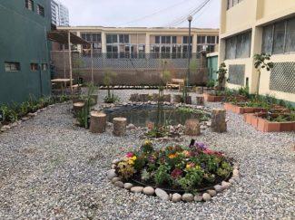 garden after-624x468