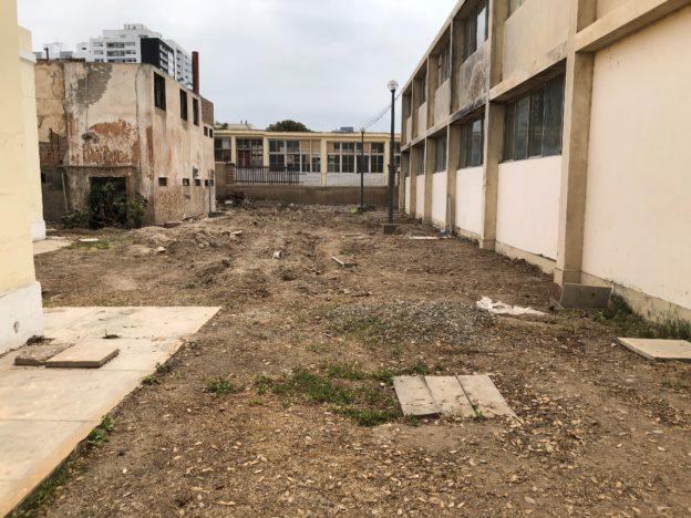 garden before-624x468